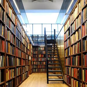 Библиотеки Екатериновки